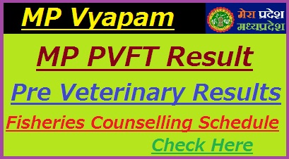 MP PV & FT Test Results 2019